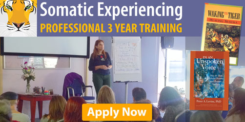 Somatic Experiencing Training - Register Your Interest Now