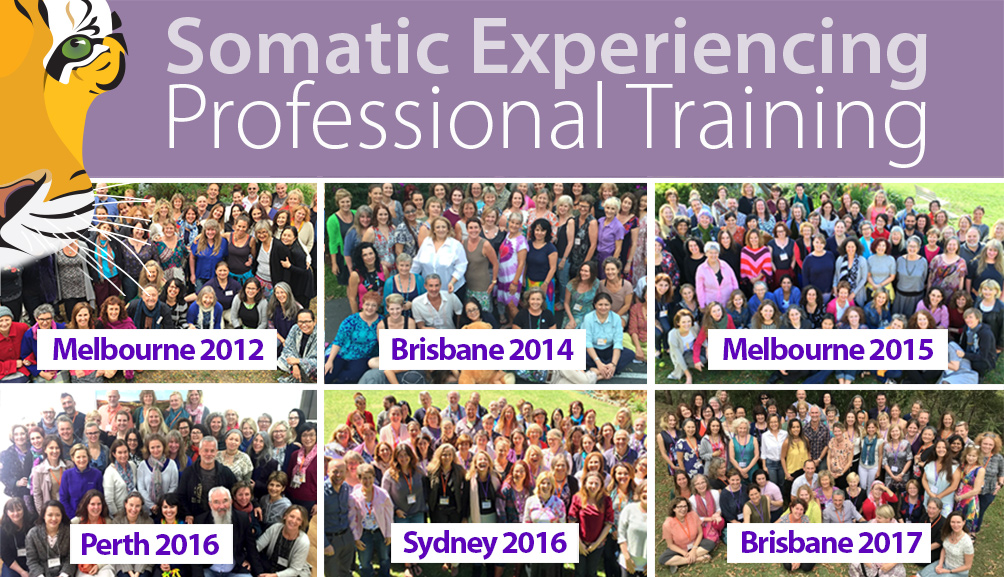 Somatic Experiencing Training - Apply Now